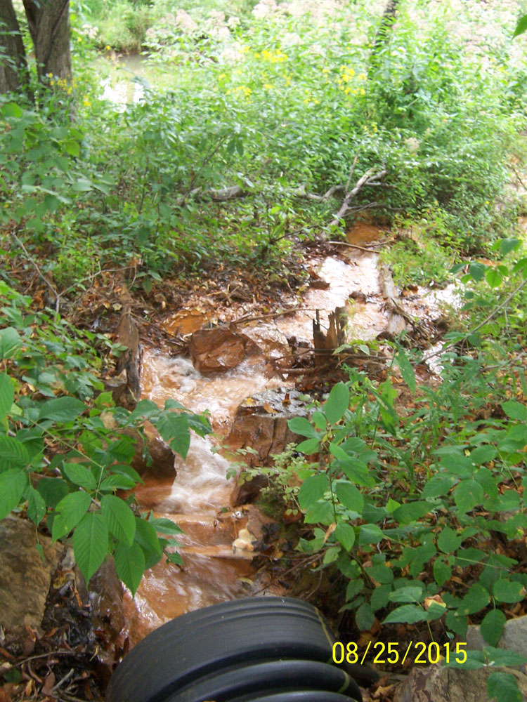 Stream Leading to Culvert