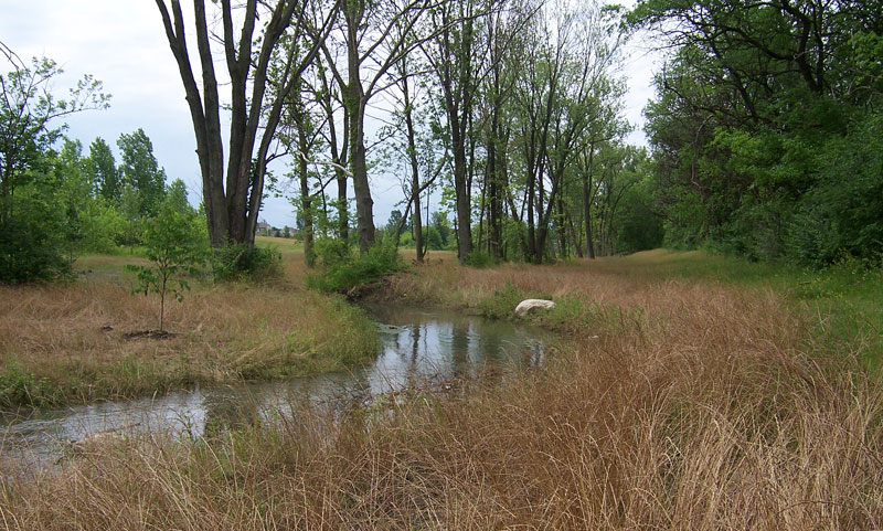 Clover Groff Stream Restoration Project