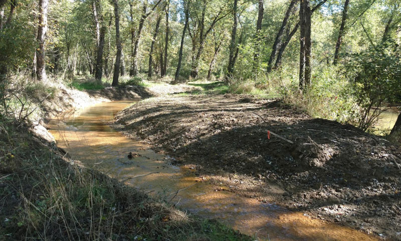 Huff Run Ecological Restoration Project