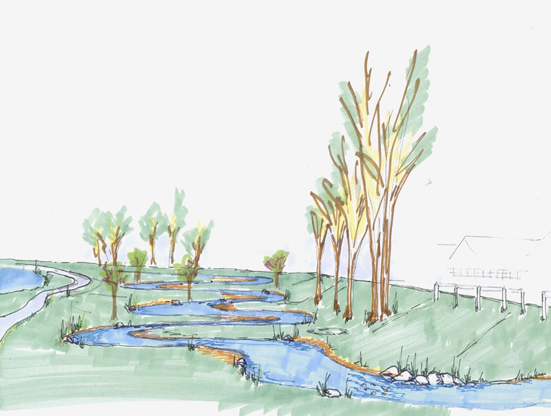Sketch of Stream and Trees